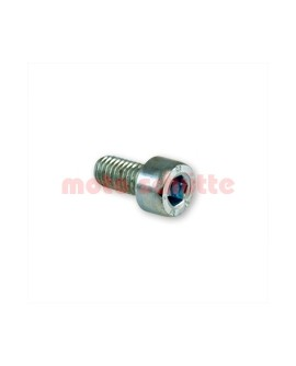 Schraube M5x10mm zur entlüftung für Bremssattel (Art.Nr. 8305)